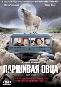 Паршивая овца